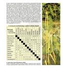 A növények társíthatósága